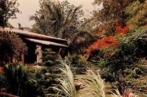 colinas house 2