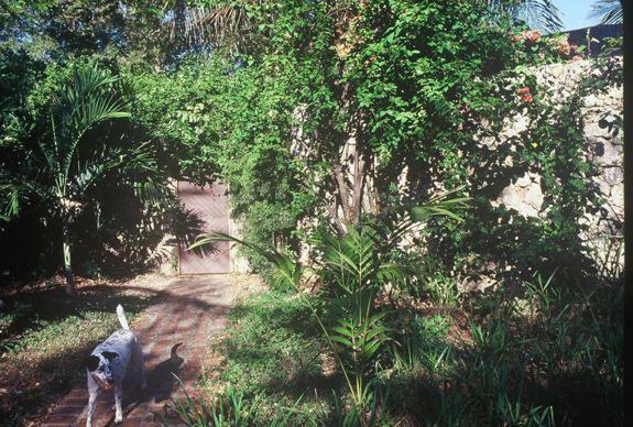 01 garden door Daisy