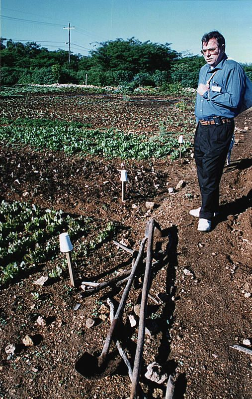 03 Marshall in Casa de Campo veggie garden