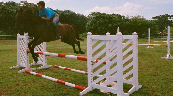 14 horse jumping - Casa de Campo Living