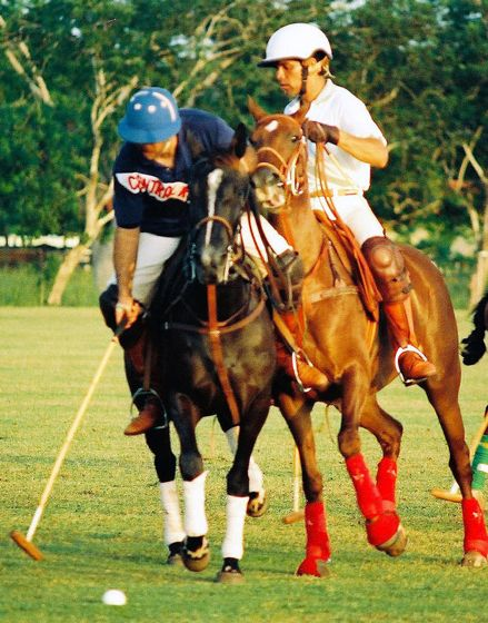 03 Horse pressure is on in a real polo match