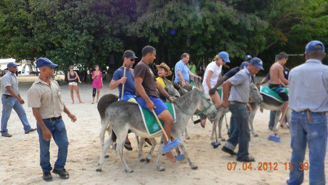 donkey polo