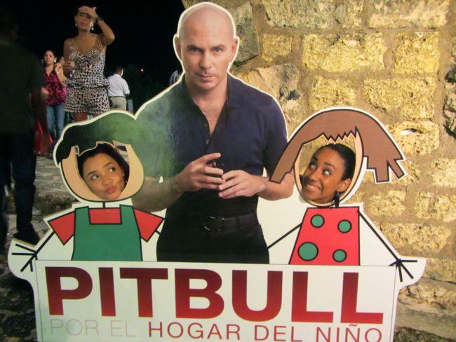 With_Pitbull