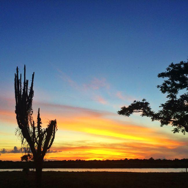 silhouette_casa_de_campo_living