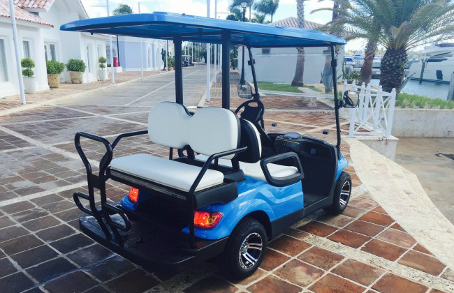 Eco Planeta Caribe Golf Cart back