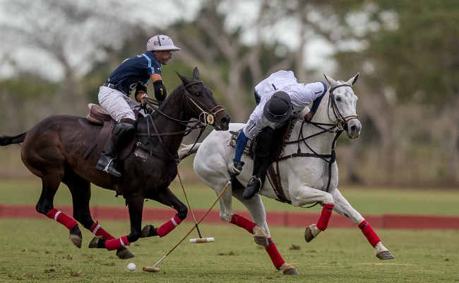 Featured Image - Los Establos and Samanes DR Polo Challenge