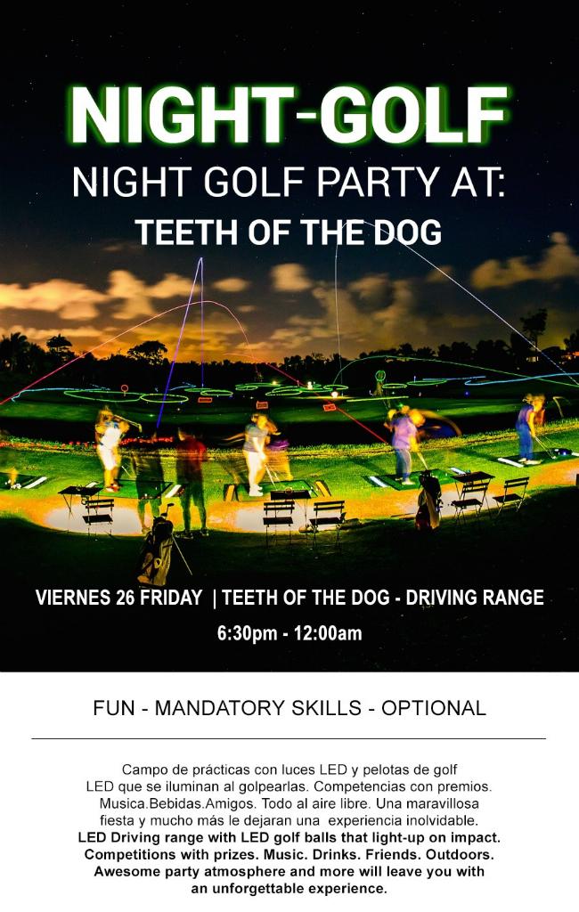 Night Golf Party Flyer
