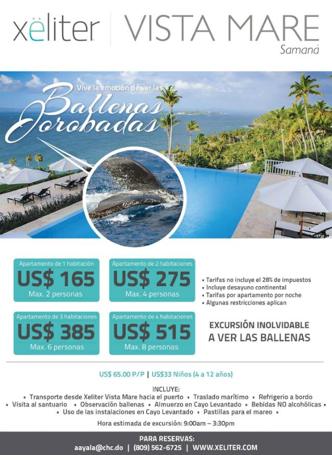 Xeliter Vista Mar Flyer
