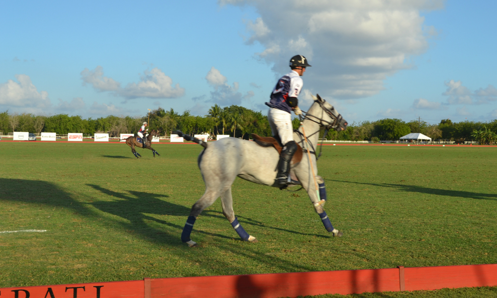 Polo Player — Gold Cup Finals