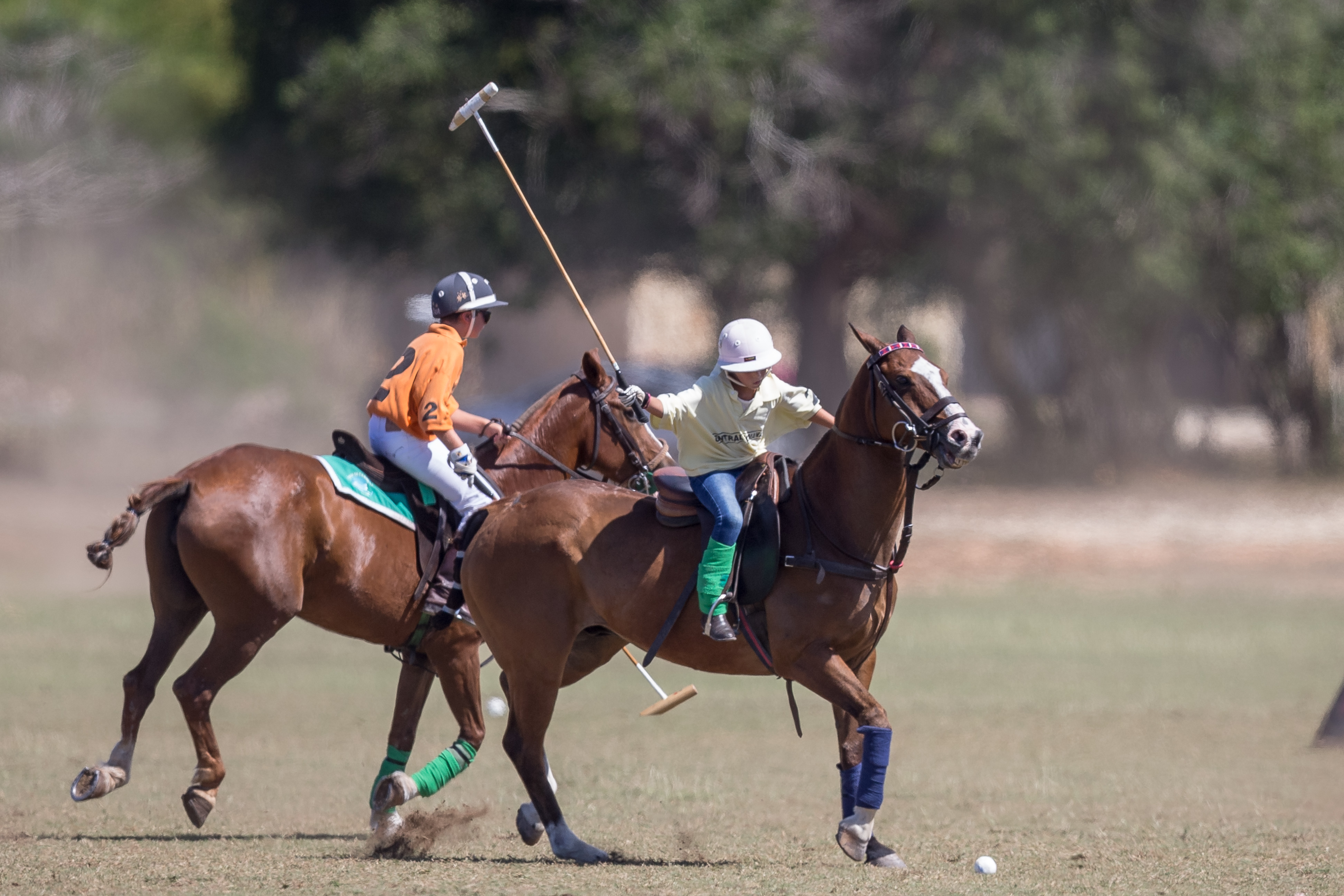 Featured Image Polo Clinics for Kids
