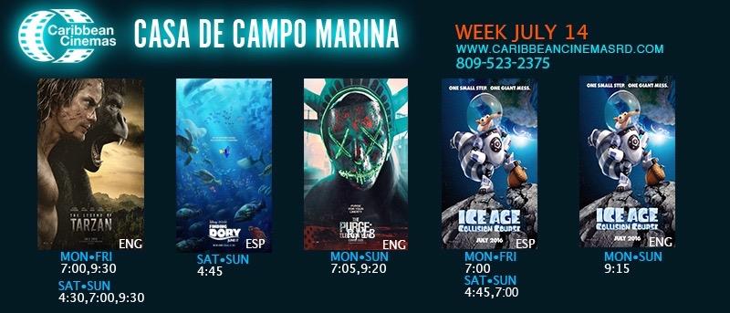 CDCAMPO-14-de-Junio