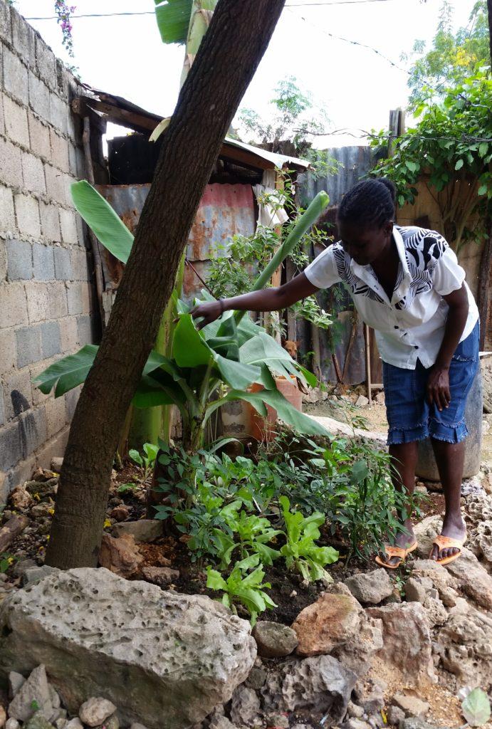 Family Gardens Program Clínica de Familia