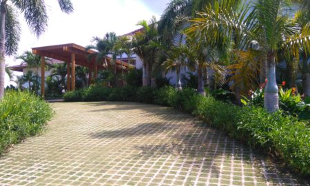 Costa Farms Landscaping